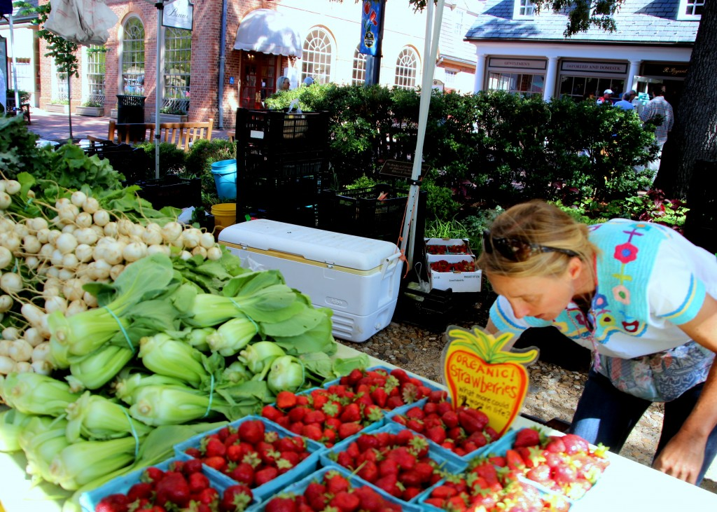 Farmers Market Williamsburg